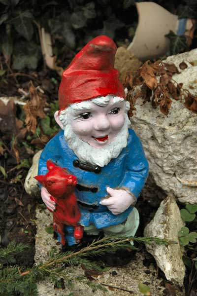 50 Gnomes mysteriously appear in Pub Garden